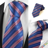 New Striped Rose Pink Blue Men's Tie Necktie Wedding Party Holiday Gift