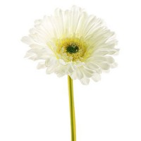 Mastone Artificial Daisy Chrysanthemum Flowers Sun Chrysanthemum,Sunflower