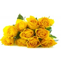 200 pcs/bag  Seeds Chinese Yellow Rose Seed For Lover Green  bonsai planting