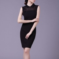 Black Summer Elegant Exclusive Mesh OL Fashion Women Party Dress Pencil Dress SIL1008Apparel<br>Black Summer Elegant Exclusive Mesh OL Fashion Women Party Dress Pencil Dress SIL1008<br>