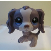 #1209 Littlest Pet Shop Purple Cocker Spaniel Dog Blue Dot Eyes Preowned LPS