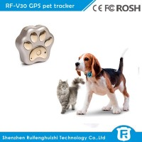 new products mini pet tracker gps dog collar for cat