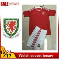 2016 2017 Thailand quality Welsh Soccer jersey kids kits 16/17 Welsh survetement child football jersey maillot de foot Free shipping